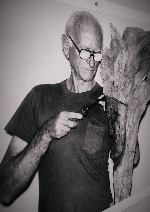 Rodolfo allou autor del museo imagenes de la selva