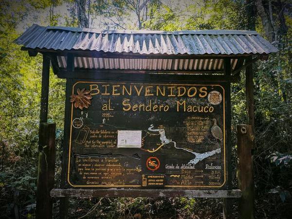 Inicio del sendero Macuco