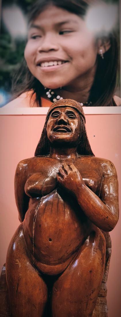 Retrato Guaraní en el Museo imagenes de la selva