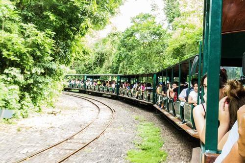 Tren ecológico de la selva Garganta del Diablo
